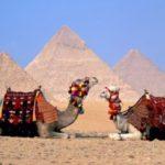 Ростуризм рекомендует туроператорам сократить продажи путевок в мятежный Египет