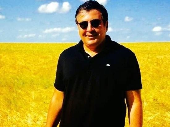 «Грузинского Януковича» Саакашвили лишили гражданства Украины