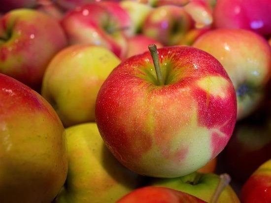 В Коломне пройдет фестиваль «Антоновские яблоки»