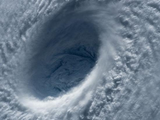 Трамп оседлал техасский ураган: президент использует стихию в политических целях