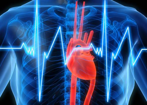 Инфаркт и сердечная недостаточность - в чем разница?