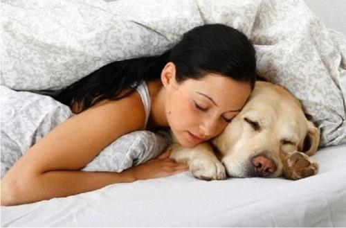 Медики раскрыли, чем полезен сон вместе с животными