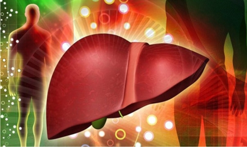 Врачи раскрыли влияние ожирения печени на весь организм