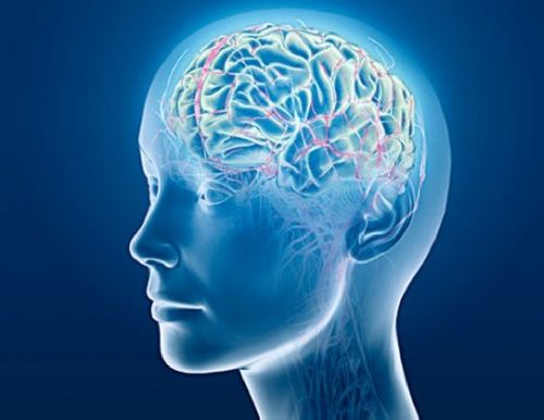 6 шагов для здоровья мозга и блестящей памяти