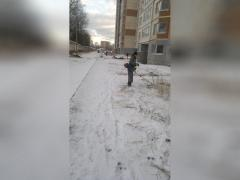 Им снег не по чем: в Челябинской области коммунальщики продолжают сенокос