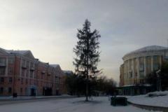 Жителей Трехгорного возмутила облезлая елка, которую установили на главной площади города